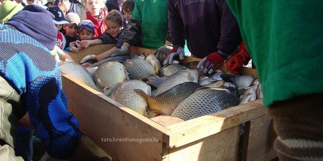 Öreg-tavi Nagy Halászat