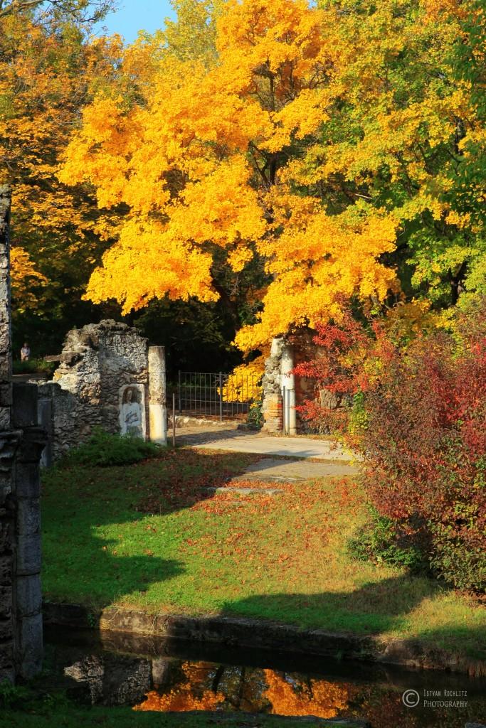 Tata ősszel,tata,programok,fotózás,